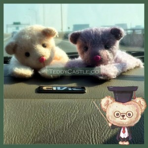 【 AB002 】Artist Bear - Pade ( 趴地 )